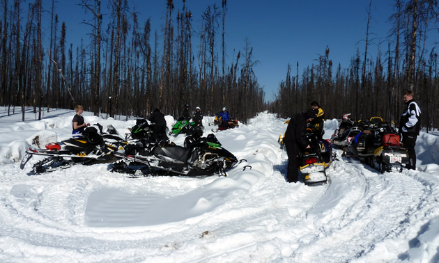 A group of sledders take a break on a cutline trail surrounded by bush.