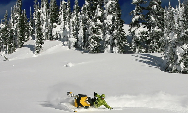 a snowmobiler is turning his sled on a large snowy area with trees behind