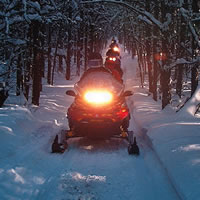 Snowmobiling in the trees