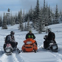 5 Riders and their sleds, on a trail in the Crowsnest Pass.