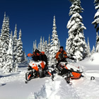 two snowmobiles in a snowy, treed area