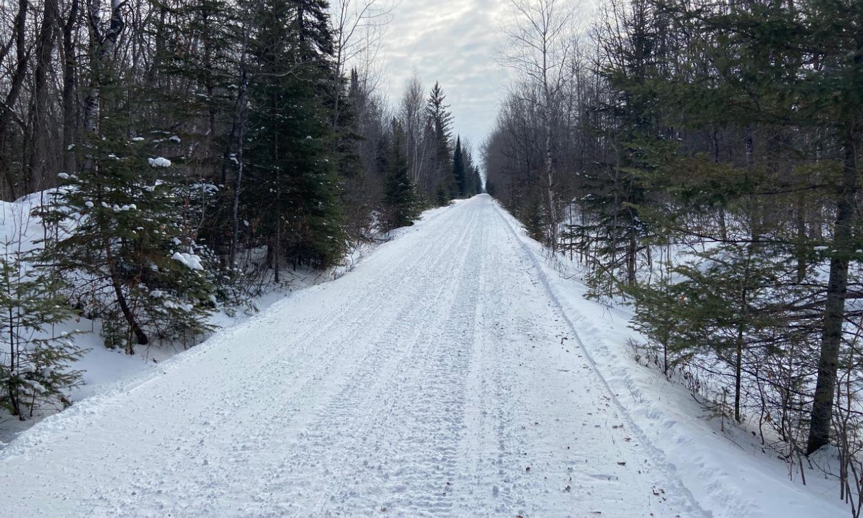 Rail bed trail 62.