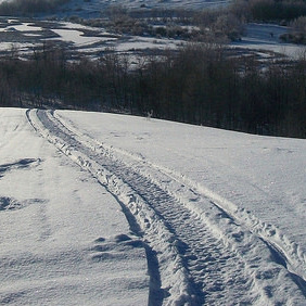 Snowmobile tracks going over a hill off into the distance.