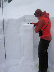 David Lussier performing a snowpack compression test to identify weak layers.