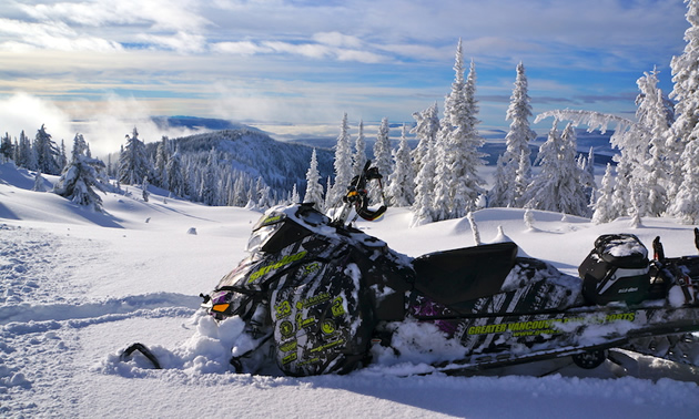 A Ski-Doo XM parked in an open meadow.