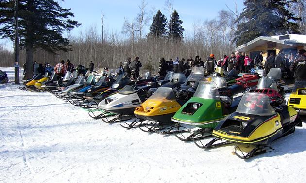 Vintage sleds lined up.