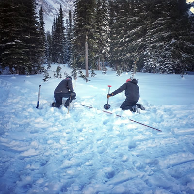 Two people doing an avalanche search.