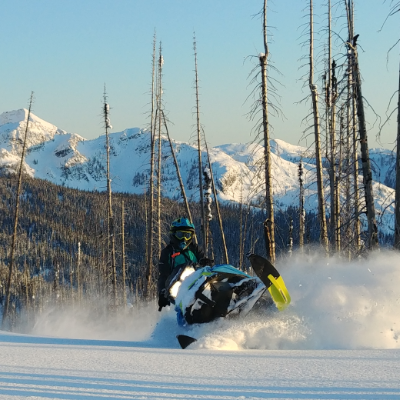 Teena Rumak rides a 2018 Ski-Doo Summit X through burn trees in Revelstoke.