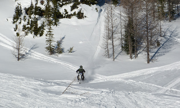 A man riding down a hill on a Timbersled snow bike.