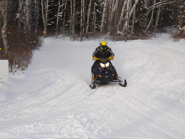 A sledder coming out of the forest on a trail in Whiteshell Provinicial Park,MB