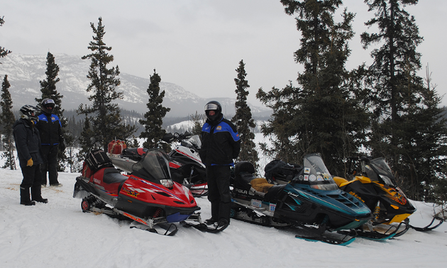 A group of snowmobilers stand next to their rides amidst a collection of trees.