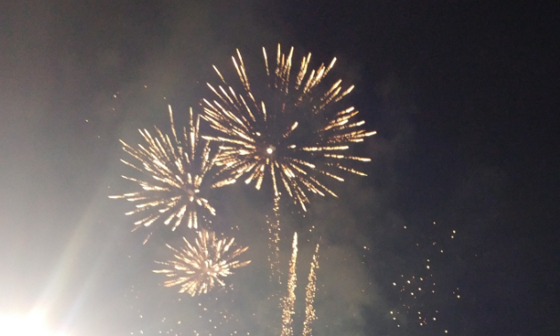 Fireworks explode in the evening air.