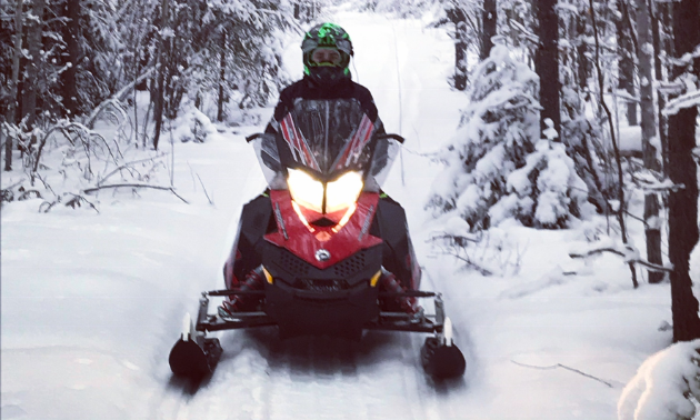 A snowmobiler rides through a trail in a tight space between trees.