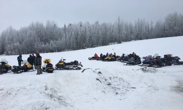 A row of snowmobiles in the snow in front of some trees.