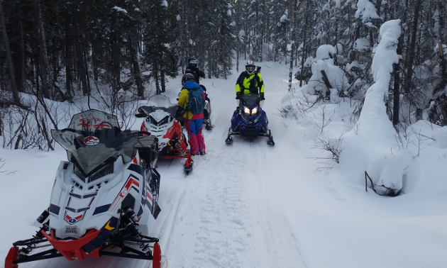 Snowmobilers take a break amidst a narrow trail lined with snow-covered trees.