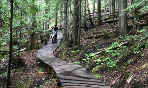 A dirt biker rides across a wooden trail in the woods.