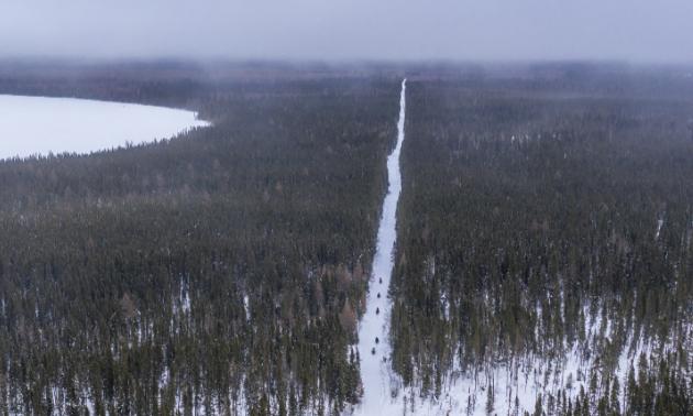A long snowmobile trail stretches through woods.