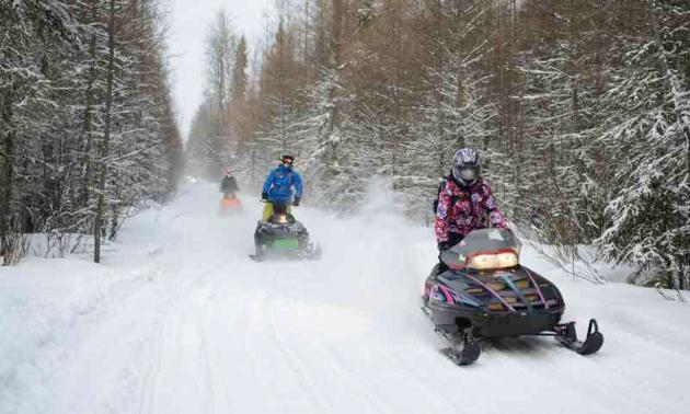 A few snowmobilers ride along a trail.