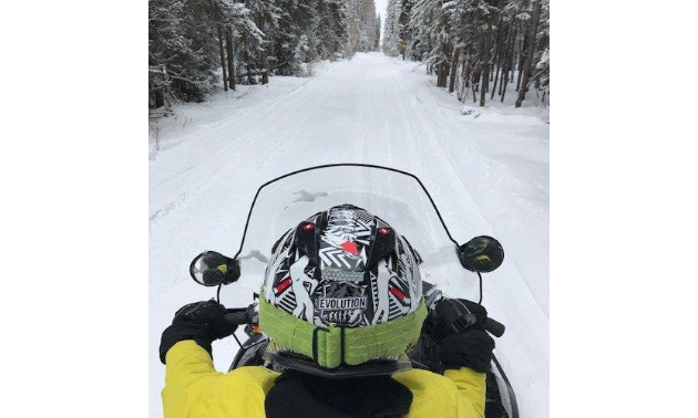 A snowmobiler looks ahead to a long stretch of groomed trail in between a line of trees.