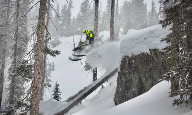 A snowmobiler rides off a cliff in a technical treed area.