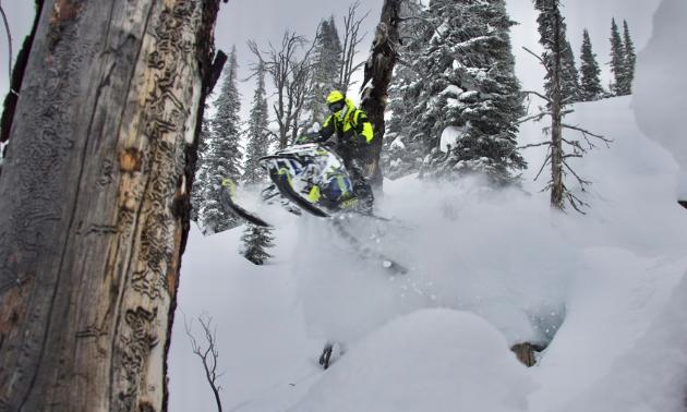 A snowmobiler jumps through trees.