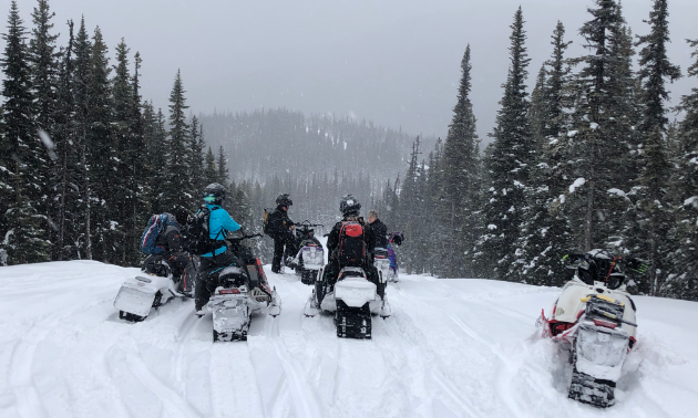 A group of snowmobilers prepare to descend down a hill into a foggy valley.