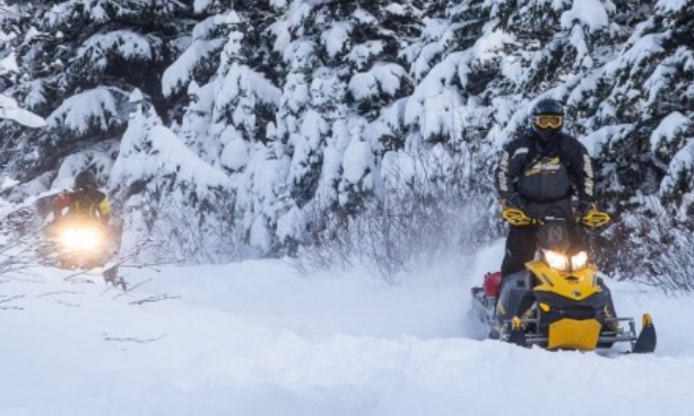 Two snowmobilers ride along a trail amidst snow-covered trees.