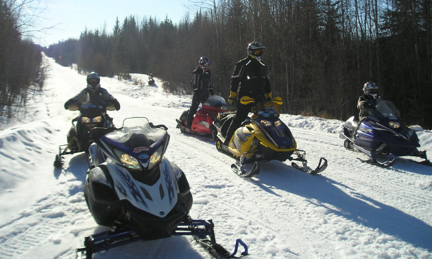 Snowmobilers sit on their sleds on a trail in Westlock, Alberta.