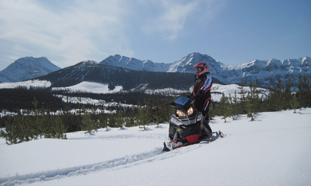 A rider looks at the view in Crowsnest Pass
