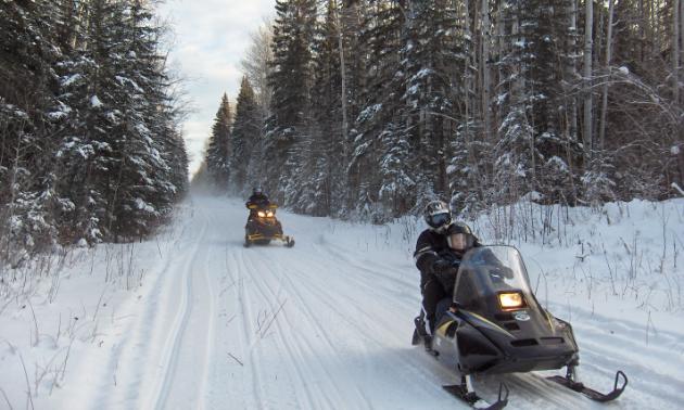 Snowmobile riders cruse along a trail
