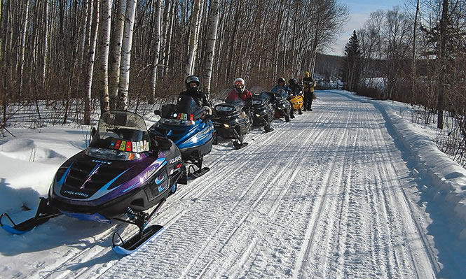 sleds lines up at the edge of a trail through the forest