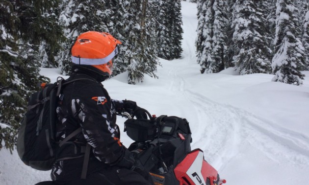 Blue River affords snowmobile riders a great deal of freedom to explore.