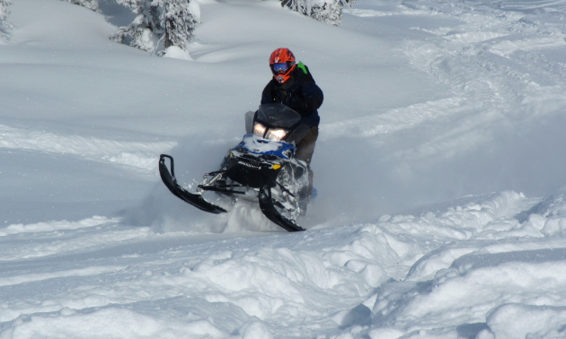 Blue River receives a surplus of fresh powder every winter.
