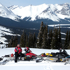 Four sleds and three riders pose in a row against a background of majestic blue snowcapped mountains and evergreen trees.