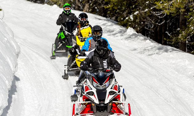 Row of snowmobilers out on a snowy trail.