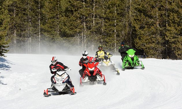 Group of snowmobiles on trail.