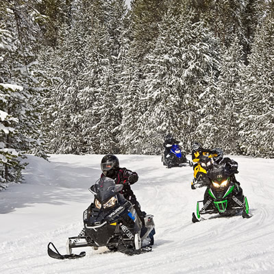 People snowmobiling on trail.