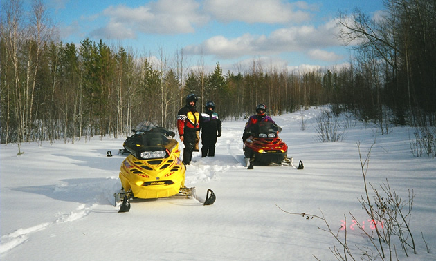 Yellow snowmobile in foreground with three snowmobilers and two sleds farther back, on a wide groomed trail edged by bush, on a sunny day