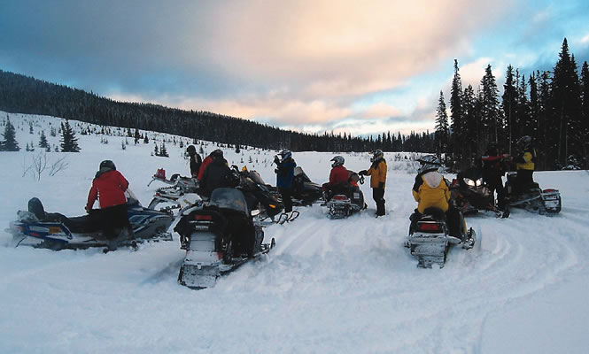 a group of sledders pause with a forested hill in the distance