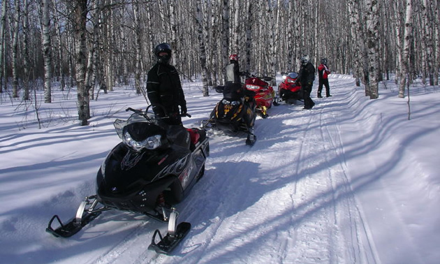 A group of sledders on a trail in Saskatchewan.