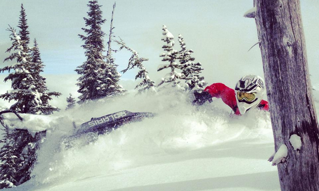 snowmobiler in powder