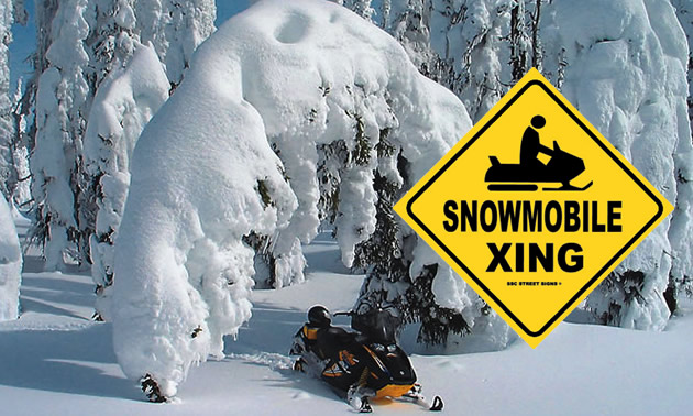 Snowmobile parked under snowy tree, with yellow 'Snowmobile Xing' sign.
