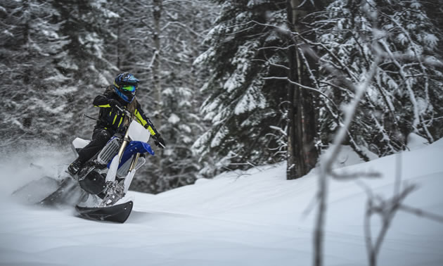 The Timbersled ARO 120 being ridden on a snowy day in the forest.