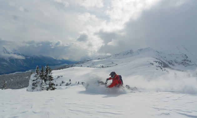 This snowmobiler is kicking up powdery snow on a mountaintop in the Clemina Creek area.