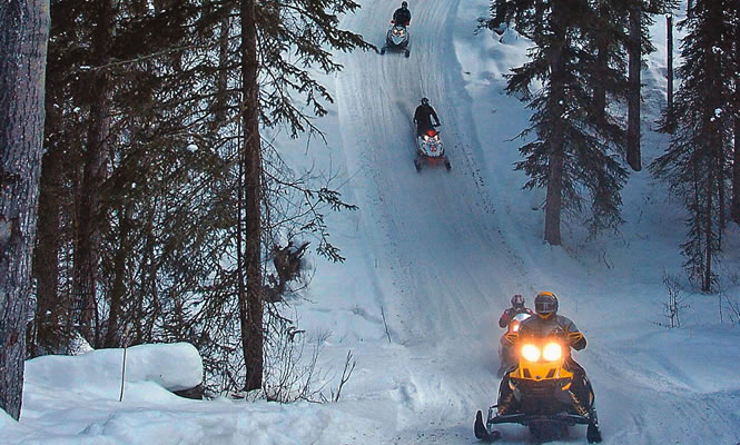 Alberta snowmobilers descend a forested trail
