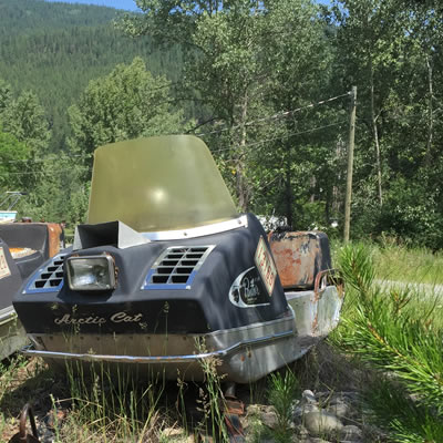 Picture of a vintage Arctic Cat Panther sitting in tall weeds.