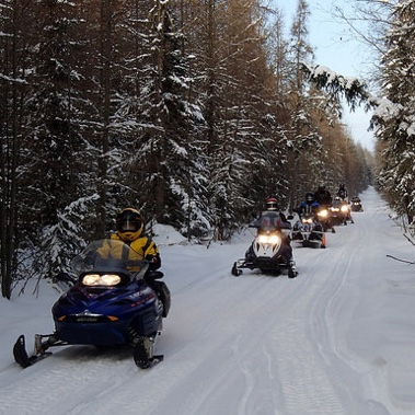 A line of riders from the Athabasca Rier Runners club, on the Grassy Lake trail.