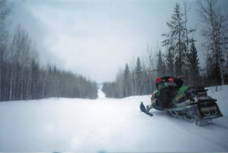 sledder on the trail