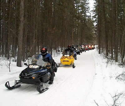 A long line of snowmobilers going through the woods on a trail.
