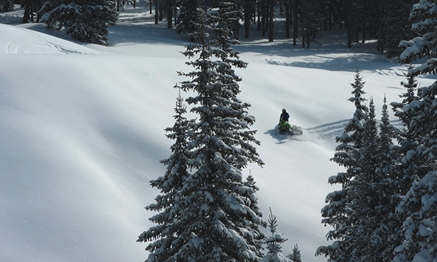 Snowmobiler riding on distant snow-covered field.